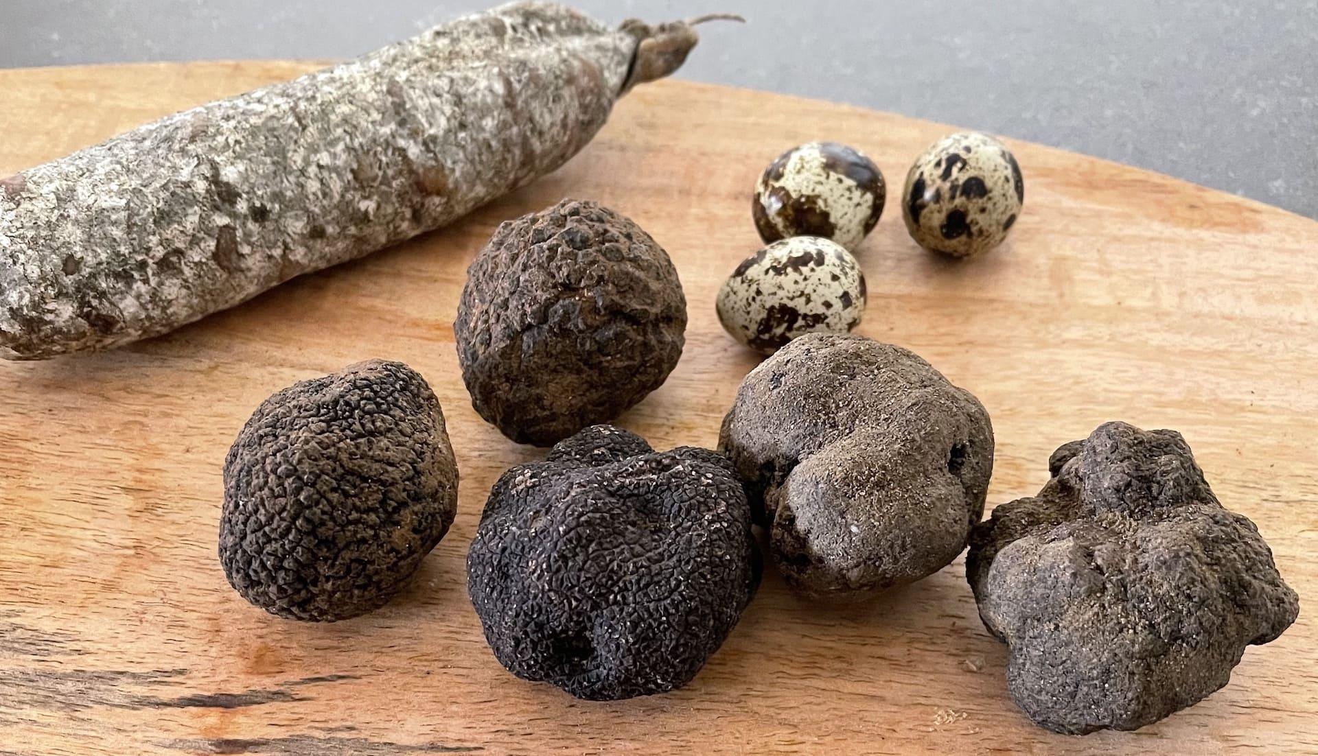 Truffes fraîches origine France